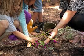 plant a garden program